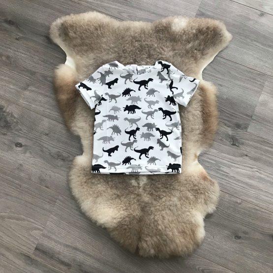 Dino hoodie voorkant